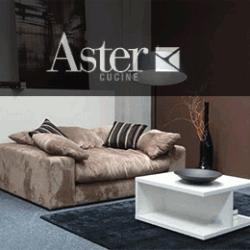 Aster-thmb