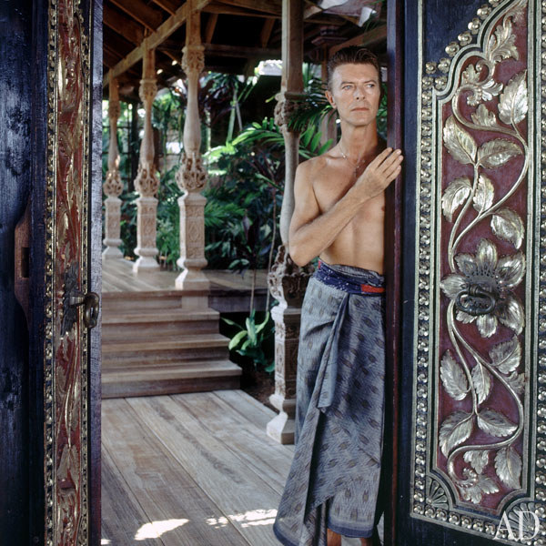dam-images-celebrity-homes-1992-david-bowie-david-bowie-03-portrait